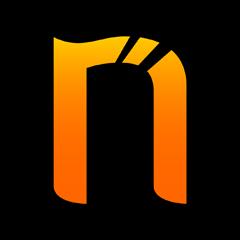 Netsparker Standard